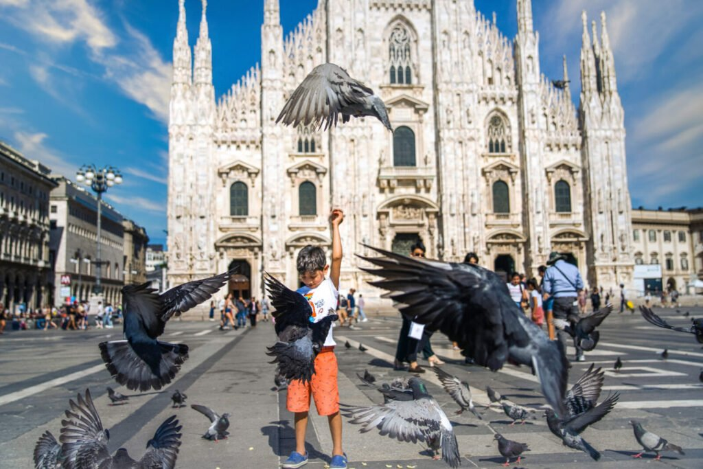 illustrate bird photography
